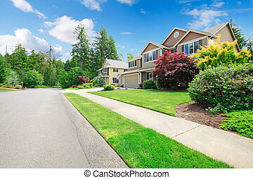 Beautiful American street with walkway and large houses -...