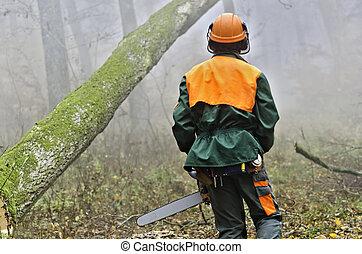 Lumberjack - A lumberjack at work in misty forest.