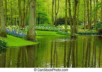spring garden Keukenhof - Colorful river and flowerbed in...