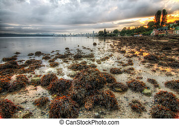 Vancouver Shoreline During Sunrise - Vancouver shoreline...