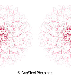 Vector dahlia flower - Vector dahlia flower isolated on...