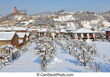 Small town under the snow. Corneliano D'Alba, Italy. - Trees...