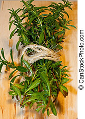organic bundle of Terragon - a freshly cut bundle of organic...