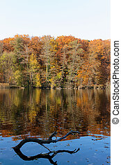 Lake Schlachtensee Fall Scene - Fall colors reflecting upon...