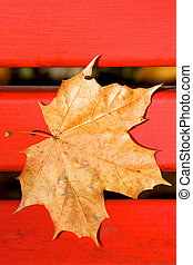 Brown Fallen Maple Leaf on Red Bench