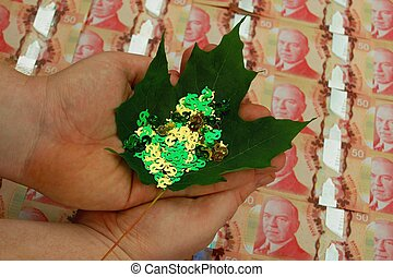Canadian Money & Confetti - Money-shaped confetti held on a...