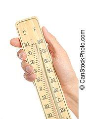Asimiento, mano, termómetro