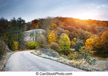 Autumn landscape Composition of nature