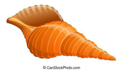 Seashell - illustration of seashell isolated on white