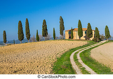 Tuscan landscape - Typical beautiful Tuscan landscape-trees,...