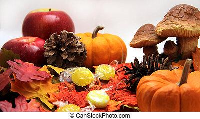 Fall Season Still Life