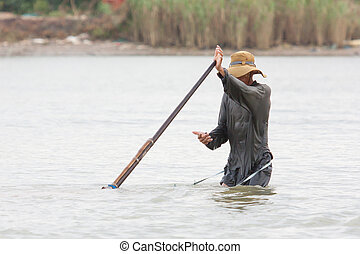 A vietnamese fisherman is searching for snakes and shells in...