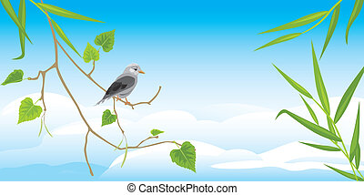 Sitting jay on the birch branch Vector illustration