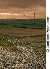 alternative energy 3 - a view from the coastal dunes of an...