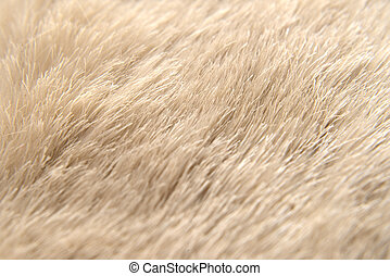 Animal hide detail - Detail of a animal hide, perfect for...