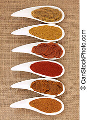 Curry Powder and Paste - Curry powder and paste in white...
