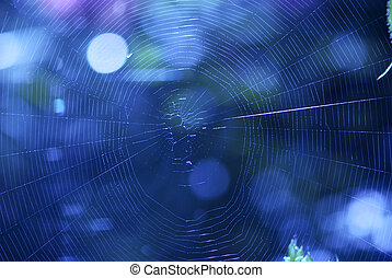 Cobweb - Abstract blue cobweb background with reflections