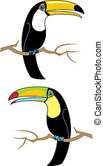 Toucans - 2 breeds of toucans. No transparency and gradients...