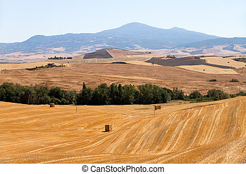 Tuscan fields and hills