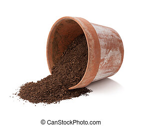 Flowerpot Spill Isolated with clipping path