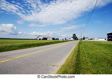 Rural road and farms