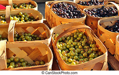 Grapes in baskets - Freshly picked grapes for sale at an...