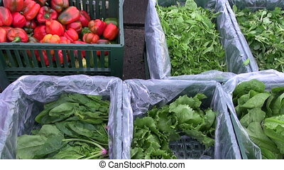 fresh lettuce and red peppers for salads in market boxes