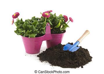 gardening in summer - gardening in pink