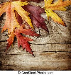Outono, folhas, sobre, madeira, fundo, com, cópia,...