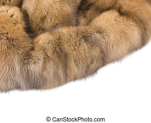Luxury Fur Russian Sable Isolated On White
