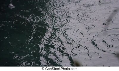 rain drops on water surface - Rain drops into puddle, medium...