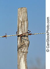 Wire barbed fence