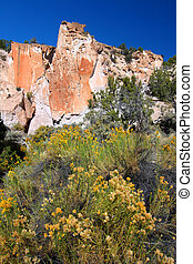 Fremont Indian State Park - Wildflowers grow below rugged...