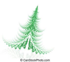 fir tree - abstract fir tree