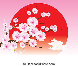 vector cherry blossom branch on the - The abstract of vector...