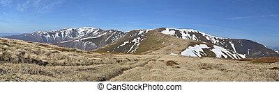 montagne, prati, primavera