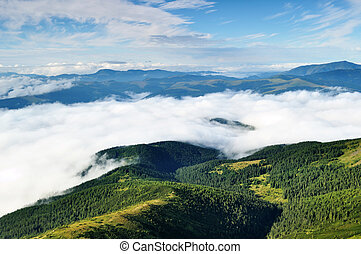 Landscape with mountains and forests under clouds