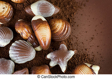 Chocolate Seashells Border