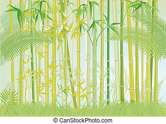 bamboo jungle