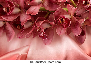 Orchids On A Silk Background
