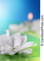 Flowers And Candles In Water