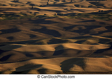 Alternate view of the Palouse landscape from Steptoe Butte...