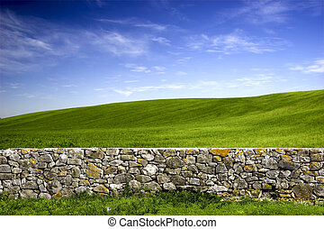 Stone wall - Beautiful green meadow with a old Stone wall