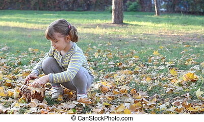 little girl collecting leaves - little girl collecting...