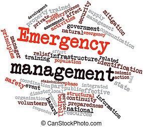 mot, nuage, Urgence, gestion