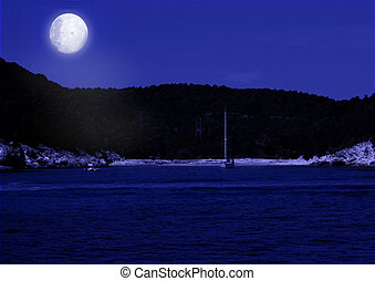 Sea landscape and full moon - Sea landscape shined with the...