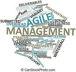 parola, nuvola, agile, amministrazione