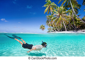 Man swimming underwater - Man swimming in a clear tropical...