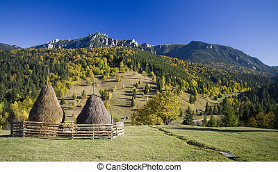 Carpathian autumn landscape