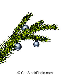 Christmas tree branch - Vector illustration of christmas...